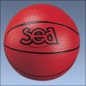 Ballon découverte SEA
